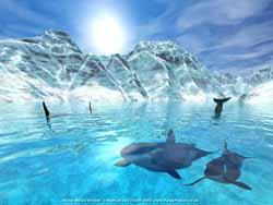 ответы на олимпиаду о дельфинах и китах