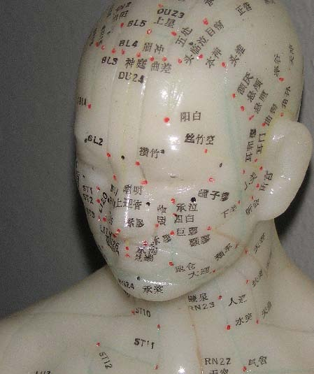 Точечный массаж тела человека Лаеннек-терапия Улица Скульптора Мухиной Чебоксары
